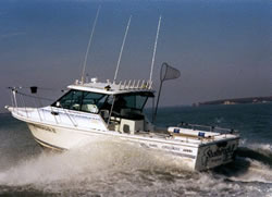 Lake Erie Fishing Charter Boat